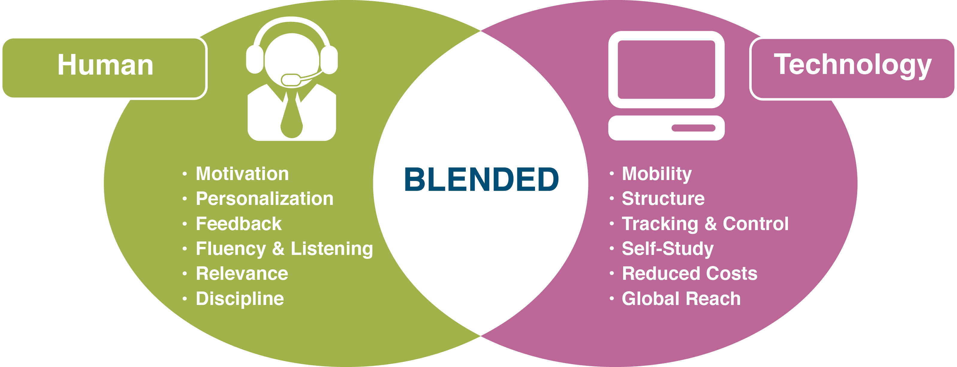 Blended-Learning-Graphic-e1446519597803